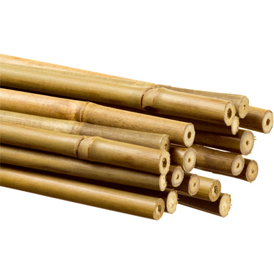 Tutores de bambu blastdesal - Tutores para tomates ...