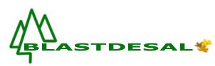 Blastdesal Logo
